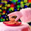 Santa grabbing a cookie - Stock Photo