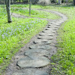 Stock Photo: Path in garden