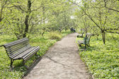 Bench on the footpath in the lush green garden — Stock Photo