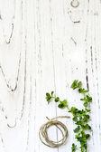 Herb Background — Stock Photo