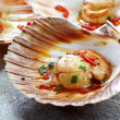 scallops — Stock Photo