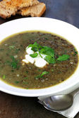 Green Lentil Soup with Watercress Sour Cream and Toast — Stock Photo