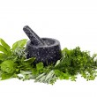 Mortar and Pestle with Fresh Herbs over White — Stock Photo