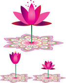 Lotus Pattern — Stock Vector