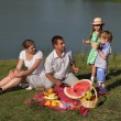 Stock Photo: Families picnic outdoors with food