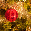 Red Christmas baubel hanging in a tree — Stock Photo