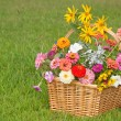 Stock Photo: Colorful flowers in wicker basket on green grass background