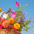 Brilliantly colored flowers in a wicker basket — Stock Photo