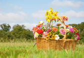 Basketful of colorful flowers on a grassy field — Stock Photo