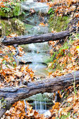 Tiny waterfall in the woods with autumn colors — Stockfoto