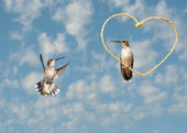 Hummingbirds in a Valentine's day design — Stock Photo