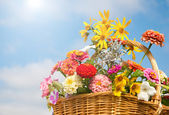 Brilliant, colorful flowers in a wicker basket against sky and clouds — Stock Photo