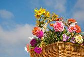 曇り空に対してバスケットの美しい花 — ストック写真