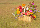 Colorful flowers in a basket — Stock Photo