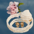 Постер, плакат: Two golden pearl ear rings inside a pearl necklace