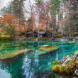 Blausee, Switzerland - Stock Photo