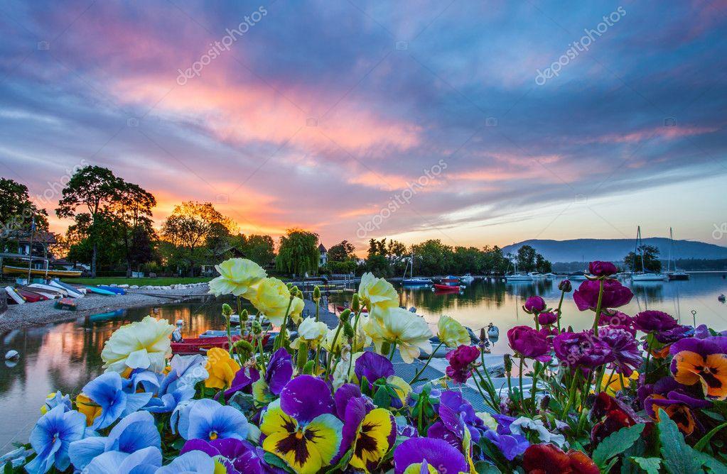 лодка в цветах