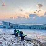 Frozen Lakefront I — Stock Photo