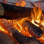 Campfire — Stock Photo #8545691