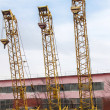 Older cranes — Stock Photo