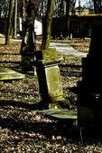 Grave stone — Fotografia Stock