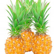 Pineapple — Stock Photo #10346575