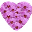 Heart shape made from pink orchid flowers - Foto Stock