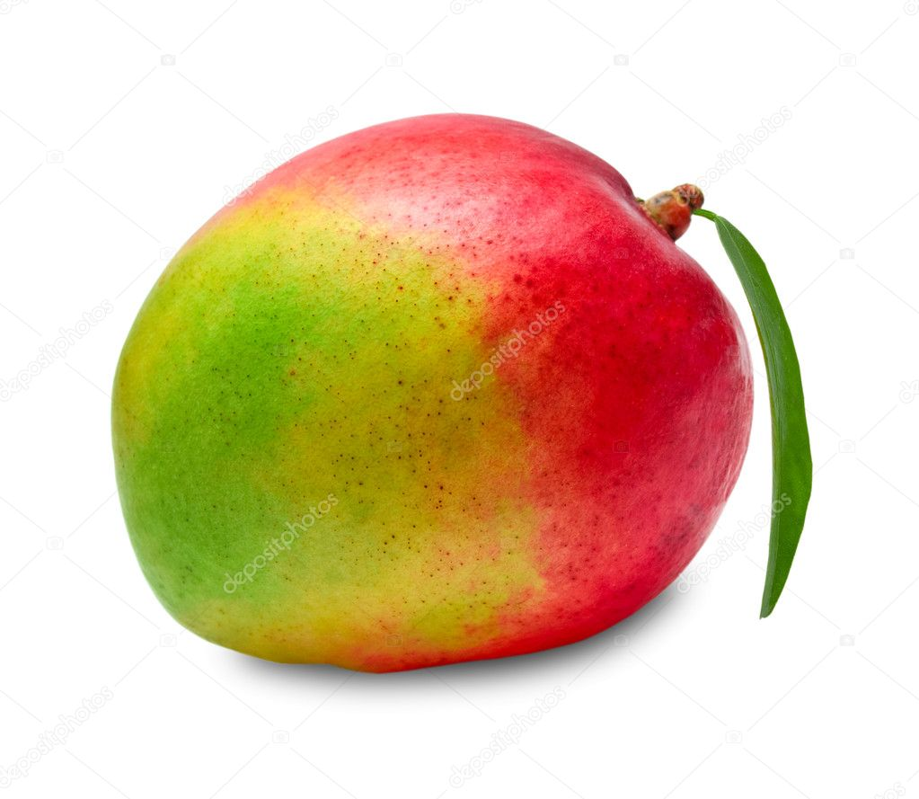 Mango isolated on white background  Stock Photo #8626058