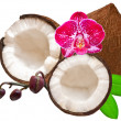 coconut — Stock Photo #8759702