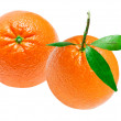 Orange — Stock Photo #8759722