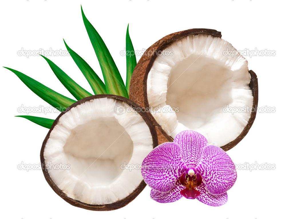 Coconut isolated on white background — Stock Photo #8759699