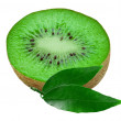 Kiwi isolated on white background — Stock Photo
