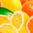 Citrus fruits background — Stock Photo #9413308