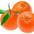 Orange — Stock Photo #9538410