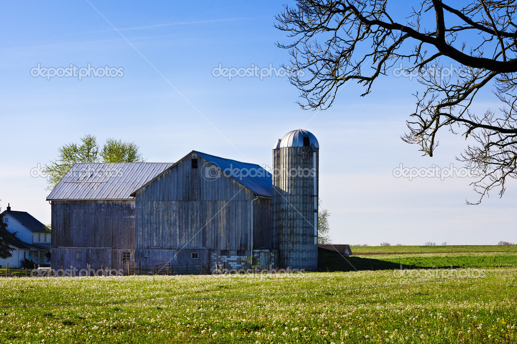 A Pennsylvania amish barn on a spring morning — Stock Photo #10349678
