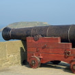 Cannon — Stock Photo #9766245