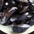 Raw Mussels — Stock Photo #8851040