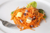 Fresh Carrot Salad — Stock Photo