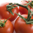 Stock Photo: Vine Ripened Tomatoes.