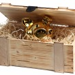 Piggybank in wooden box with wood-wool — Stock Photo