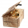 Golden piggybank in box with wood-wool — Stock Photo #8293226