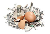 Shredded dollar bank notes and broken eggshell — Stock Photo
