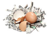 Nest made of shredded dollar bank notes and broken eggshel — Stock Photo