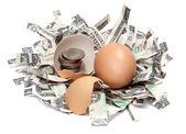 Rendelenmiş dolar ve madeni paralar ile yumurta kabuğu — Stok fotoğraf