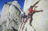 Rock climbing team. — Stockfoto