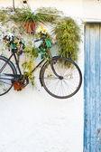 Hanging bike — Stockfoto