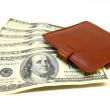 Wallet with dollars on white background — Stock Photo