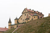 Radziwill Castle — Stock Photo