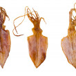 Dried squid — Stock Photo #10362265
