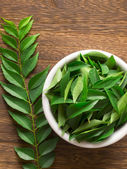 Curry leaves — Stock Photo